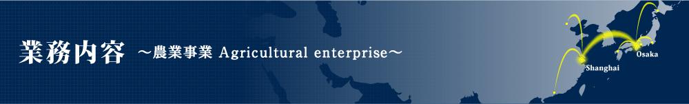 業務内容-農業事業 Agricultural enterprise